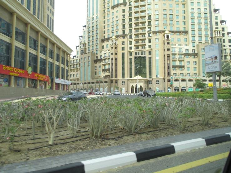 Laura Vanessa Nunes_Suicide at the Burj Khalifa_Laura's Voice Whispers from an Angel_Mubarak bin Fahad_Leona Sykes_IMG_0643